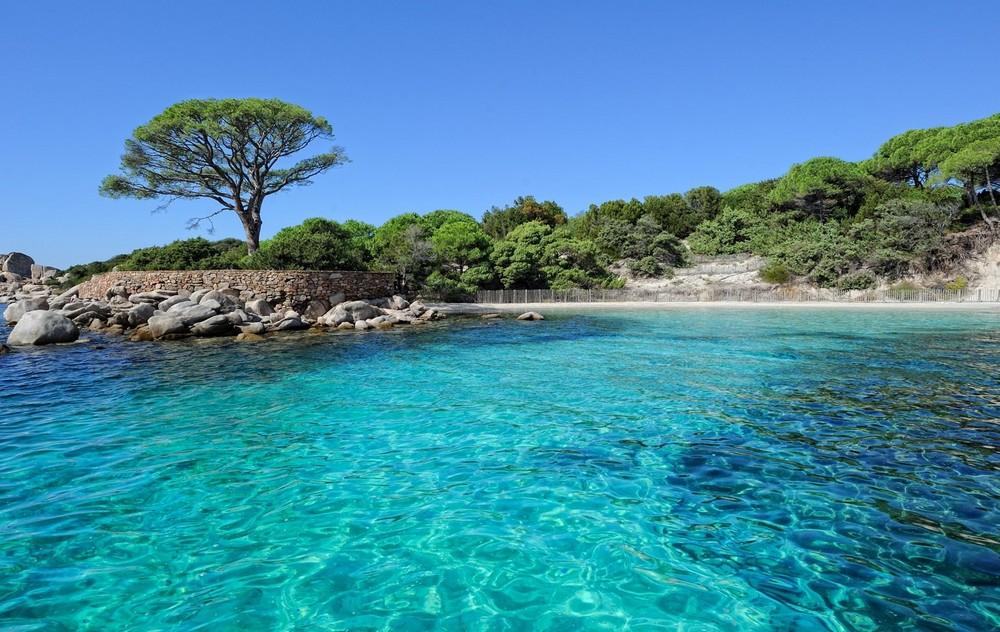 Pour vos vacances, choisissez une île de France